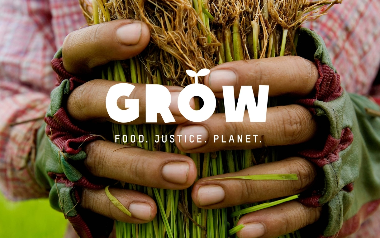 grow-campaign-rice-farmer-cambodia-ogb-46427_1220x763